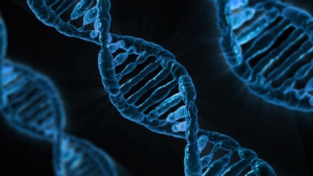 Delitto dell'Olgiata: DNA sicuro?